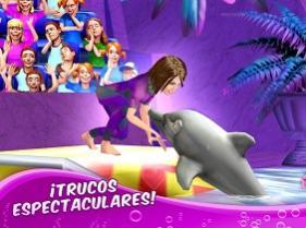 entrenar a delfines
