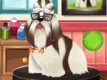 Juego de lavar mascotas